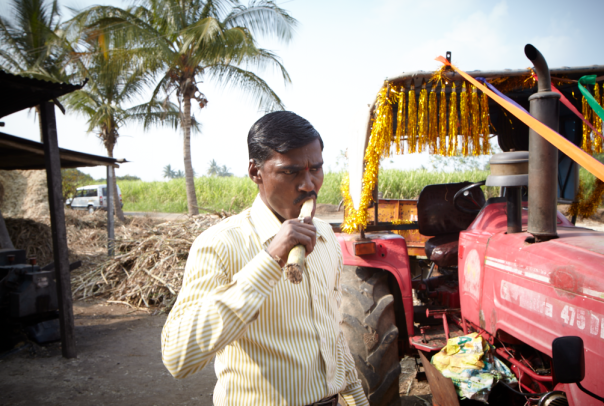 Our driver going to town on some sugar cane.